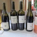 vins dégustés